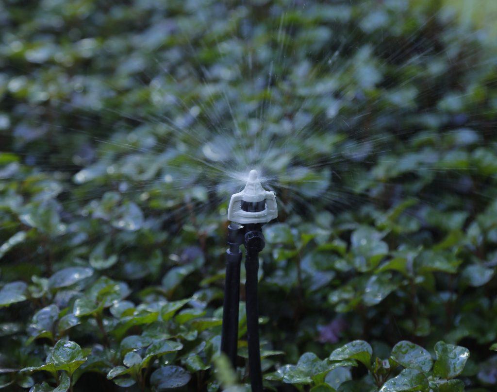 Béc tưới phun mưa BSpronet cho hạt đều và mịn