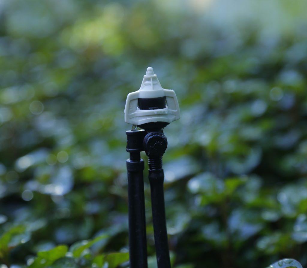 Gắn béc tưới phun mưa BSpronet vào ống tưới LDPE 6mm cố định lại bằng chân cắm 30cm