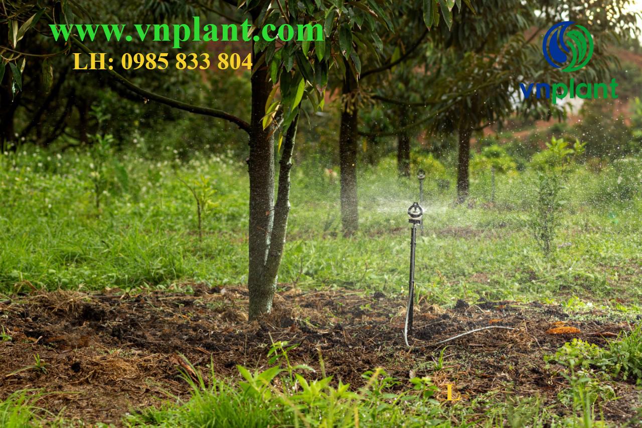 béc tưới bù áp bssuper hệ thống tưới vnplant